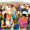 Bayou Boogaloo Volunteers Needed